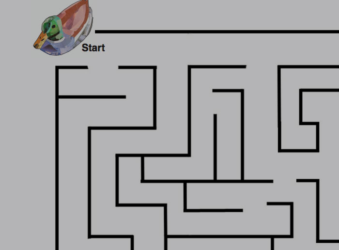 Ducky Maze