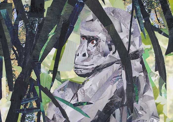 Gorilla by Megan Coyle