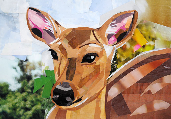 Oh Dear, a Deer by collage artist Megan Coyle
