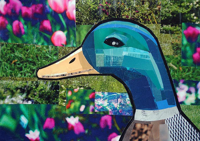 Quack It is a collage by collage artist Megan Coyle